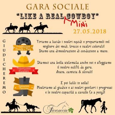 Gara Sociale